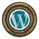 Why your Website would benefit from the WordPress Platform.